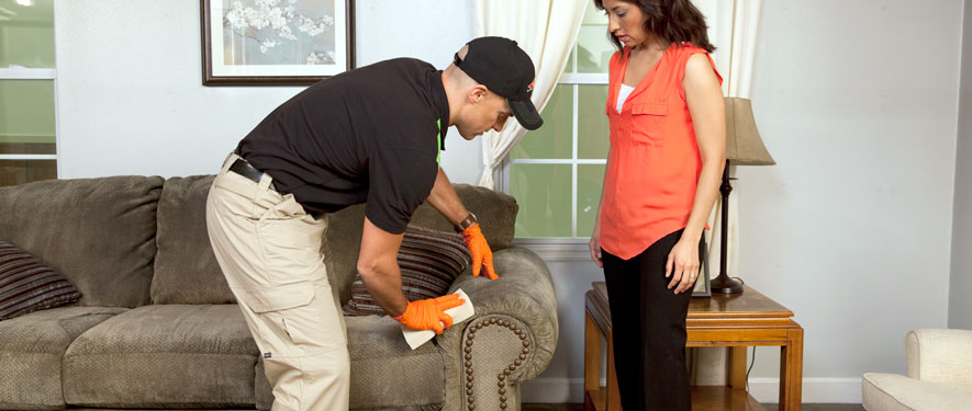 Derry, NH carpet upholstery cleaning